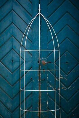 Halbrunde Rankhilfe Höhe: 200 cm B: 60cm Rankgerüst Rankgitter Metall Verzinkt