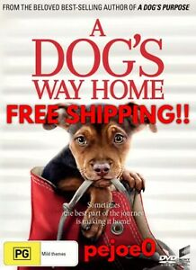 A-Dog-s-Way-Home-DVD-Reg-4-FREE-POST-2019-New-Sealed