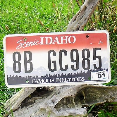 Echte Kennzeichen'kennzeichen Von'idaho (8bgc985) - Usa - Nummernschild