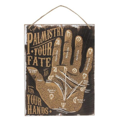 Cabinet Of Curiosities Palmistry Wall Sign Novelty Gift Brand New Fate
