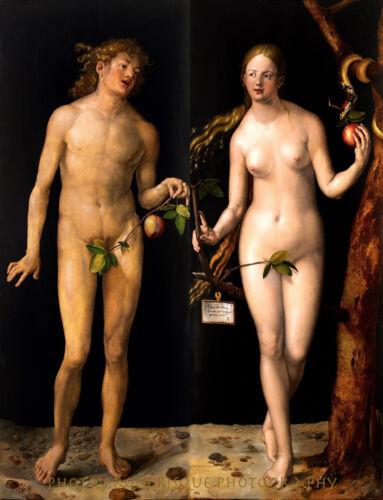 "Nude Adam and Eve 8.5x11/"" Photo Print Albrecht Durer Classic Painting Fine Art"