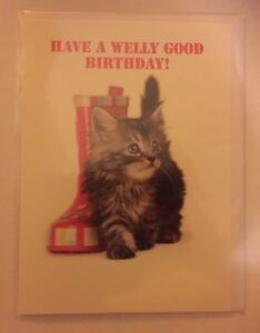 Tabby-kitten-cat-have-a-welly-good-Birthday-card-hope-it-s-purr-fect