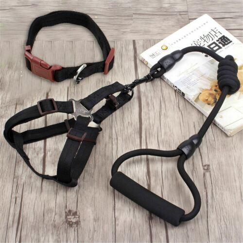 Dog Nylon Leash and Collar Rope Pet Supplies Training Harness Walk Lead Climbing