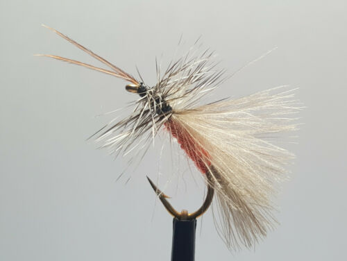 3 X CDC ORANGE HIGH RIDER SEDGE DRY TROUT FLIES sizes 10,12 available