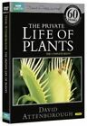 Private Life of Plants - DVD Quick Post for Australia Top SELLER