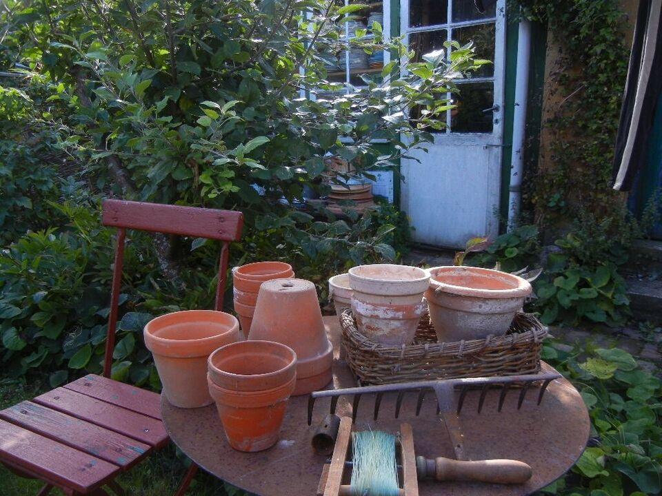 Romantiske gamle og/eller brugte urtepotter