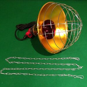 Infrared Brooding Heat Lamp 250w Bulb Reducer Switch And Guard Chicks Puppies Ebay