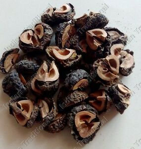 Bulk-Amla-Indian-Gooseberry-Amlaki-Phyllanthus-Emblica-Dried-Organic-Dry-Fruit