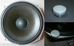 Paint-renovation-for-ROLA-Celestion-T2619-Woofer-Ditton-25-44-66