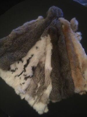 Kaninchenfell 5 Stück 40-50 cm NEU Hasenfell gegerbt weich flauschig Leder