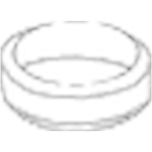 256-216 Dichtring für Abgasrohr NEU BOSAL