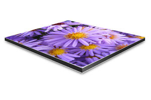 Bild hinter Acrylglas 40 x 60 cm Motiv Druck Wunschmotiv Geschenkide Ihr Foto