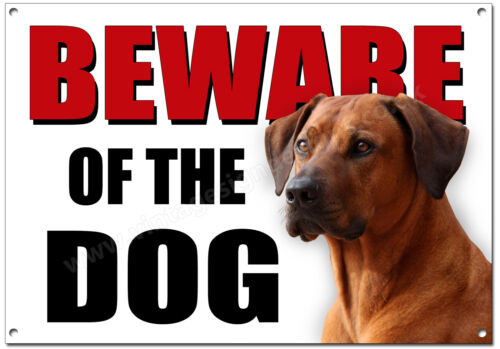 RHODESIAN RIDGEBACK BEWARE OF THE DOG METAL SIGN (A4 SIZE) SECURITY,GUARD DOG.