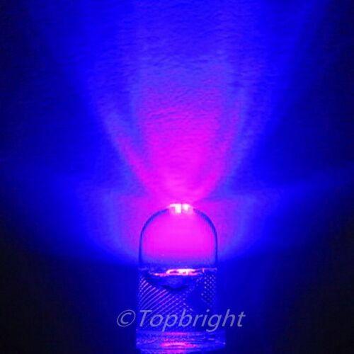 30 PCs 0.5W 5-Chips 5mm 60° High Power UV LED 23000mcd
