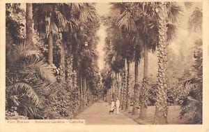 R188302 Palm Avenue. Botanical Gardens. Calcutta. Thacker Spink and Co