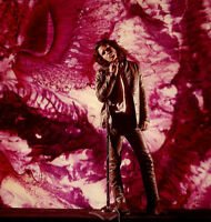 Jim Morrison The Doors Photo Print 11x14
