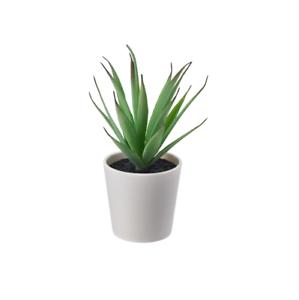 Ikea Fejka Topfpflanze Klein Sukkulente Kunstpflanze Buropflanze