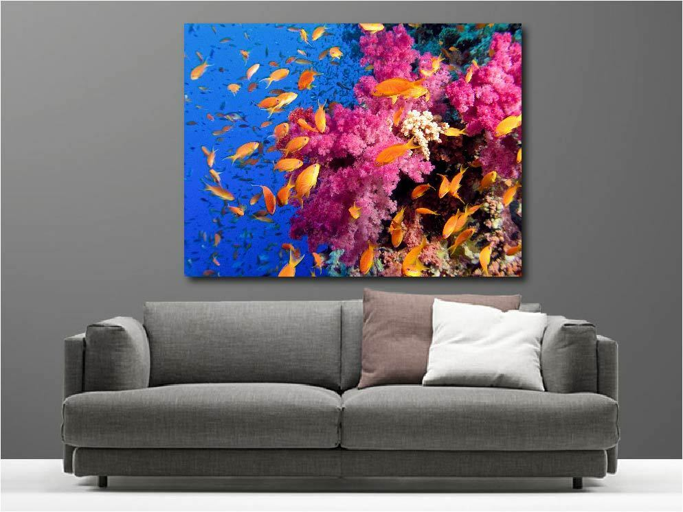 Gemälde Gemälde Deko Set Fische orangen Ref 20019679