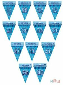 Birthday-Blue-Glitz-9ft-Triangle-Flag-Bunting-Boy-Male-Ages-13-to-100