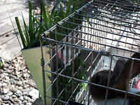 $$ Special 36 Galvanized Hay Racks For Rabbits Small Animal Cages Wholesale Lot