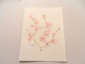 Handmade blank Note Cards- Box of 5- Cherry Blossoms - #198a