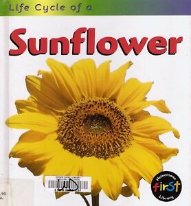 Life-Cycle-of-a-Sunflower-by-Angela-Royston-Science-Hardcover-Flowers