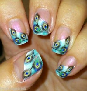 Nail Art Feathers Peacock Nail Art Water Decals Nail Stickers Transfers B105 Ebay