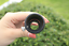 Datyson-1-25-034-2x-Barlow-Lens-Fully-Multi-Coated-Metal-for-Telescope-Eyepieces thumbnail 7