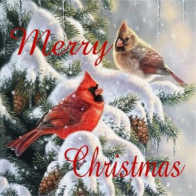 Christmas Cardinals Images.Merry Christmas Cardinals Pine Tree Coasters Set Of 4 Fabric Top Rubber Backed Ebay