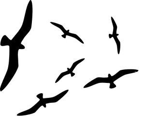 6x vogel silhouetten fenster glas schutz vogelschreck aufkleber wintergarten ebay. Black Bedroom Furniture Sets. Home Design Ideas