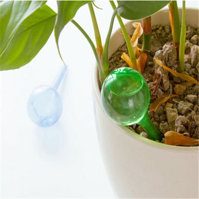 2 Sizes House Garden Water Houseplant Plant Pot Bulb Automatic Self Watering S