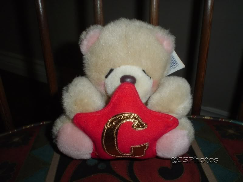 Forever Friends Bear Andrew Marroneesword England Wtags