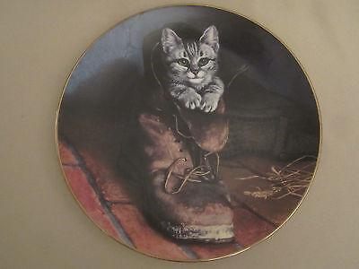"""In a Hidden Garden~Tabby Cat  /""""Curious Kitten/"""" Plate"""