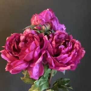 Image Is Loading Bunch Of 3 Large Hot Pink Peonies Realistic
