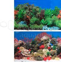 Caribbean Coral Reef/freshwater Garden 2 Scene 18-20h Aquarium Background
