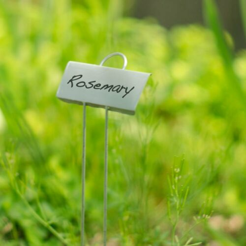 Everlasting Flower Beds Markers for Garden With Paint /& Brush Metal Labels