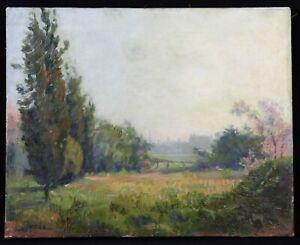 Fontana-XIX-Xx-Antique-Oil-on-Canvas-Signed-Landscape-Impressionist