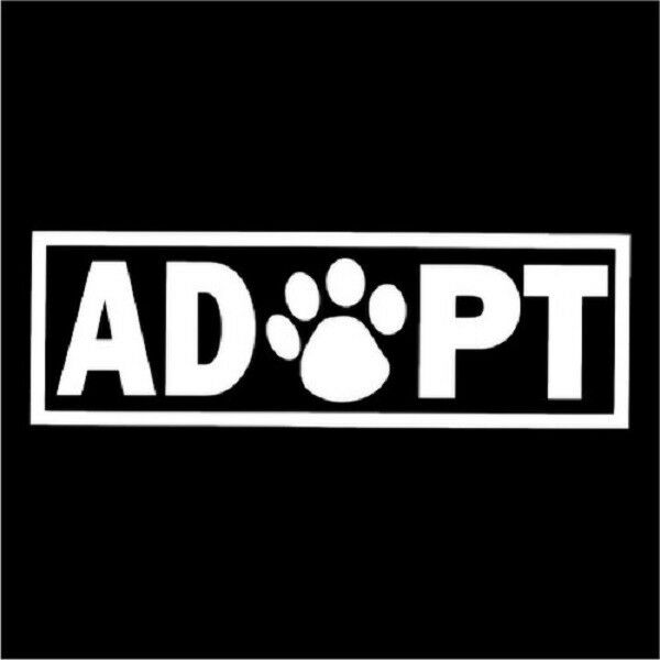 Adopt a Pet Paw Paws Print Vinyl Car Decal Decals Cats Kittens Oracal Window 6""