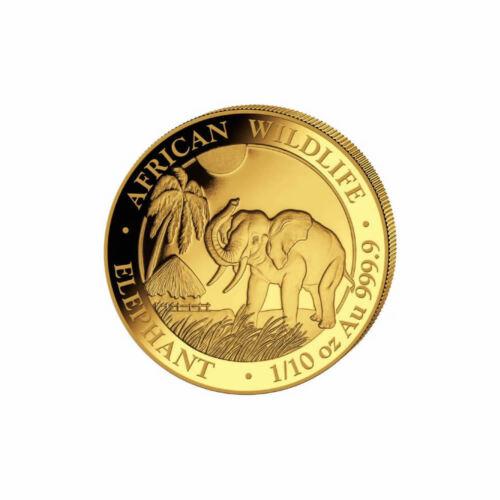Somalia 2017 Gold Elephant 1//10 ounce