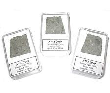 NWA 2949 Eucrite meteorite achondrite micromount ~3g professional display case