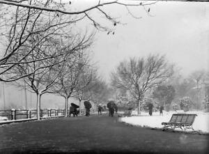 First-snow-for-many-years-Shanghai-China-RARE-Photo-1906-7