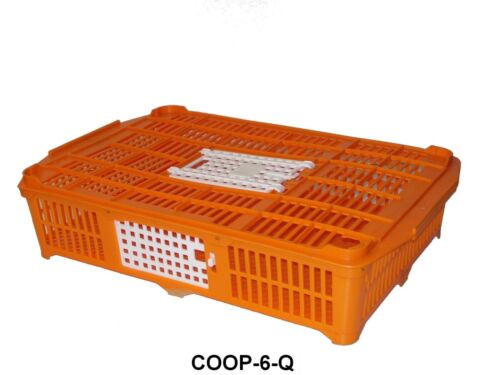 Quail Transport Crate Game Bird Transport Crate Plastic Quail Crate Quail Coop
