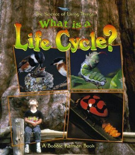 What Is a Life Cycle? (Science of Living Things)-ExLibrary