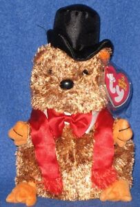 TY PUNXSUTAWNEY PHIL 2007 GROUNDHOG BEANIE BABY - MINT TAGS - COC PA EXCLUSIVE