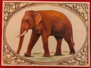 Hand-Painted-Elephant-Horse-Camel-Miniature-Painting-India-Art-Carved