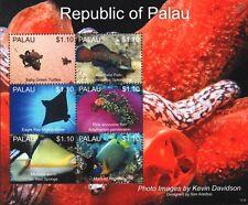 La vida marina de alta mar (tortugas/Eagle Ray/Pez Ángel/hoja De Sellos De Peces) (2013) Palau