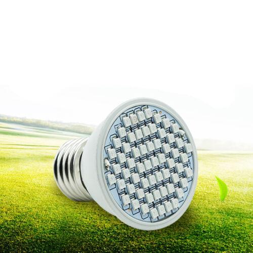 600W 1200W Watt LED Grow Light Lamp Plants Flower Oganic Growing Full Spectrum