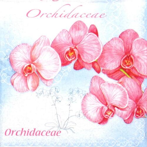 Papel 4x Servilletas Para Decoupage Decopatch Craft orhidea Flor