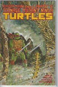 Eastman-and-Laird-039-s-Teenage-Mutant-Ninja-Turtles-37-Mirage-Studios-TMNT
