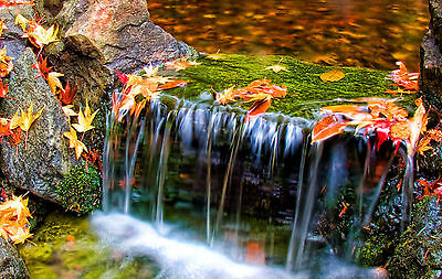 Picture Poster Tiny Trickle Waterfall in the Peak District Hill Framed Print